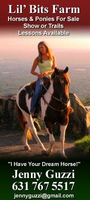 Horse Properties Li Ny